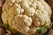 A whole organic cauliflower (close-up)