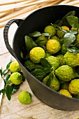 Kaffir limes in a bucket