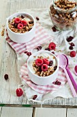 Yoghurt with granola and raspberries
