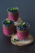 Blueberry and chocolate dessert in a glasses, garnished with fresh blueberries and mint