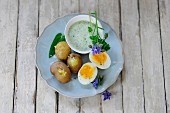 Frankfurt green sauce with new potatoes and egg