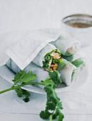 Vietnamese spring rolls on a white porcelain plate