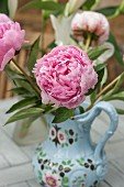 A pink peony in a painted porcelain vase