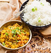 Vegan dhal with rice (India)