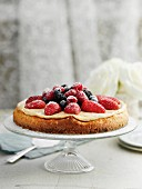 Cheesecake with vanilla cream and berries on a cake stand