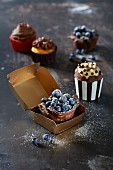 Cupcakes with chocolate and blueberries