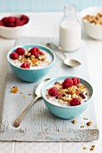 Muesli with oats, raspberries and nuts