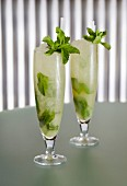 Mint cocktail in tall glasses