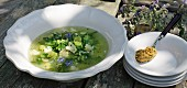 Green summer soup with olive paste