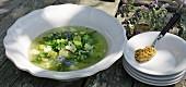 Grüne Sommersuppe mit Olivenpaste