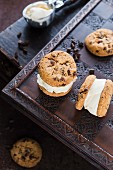 Ice cream cookie sandwiches