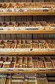 Spezialgeschäft für Raucher, Pfeifen Tesch, Hamburg