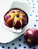 Apfel im Apfelschneider