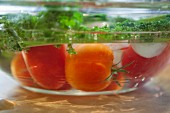 Tomatoes and green kale in a bowl of water (close-up)