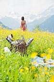 Picknickkorb auf einer Alpenwiese