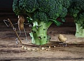 A peanut bird following a trail of bread crumbs with a peanut man waiting behind a broccoli tree