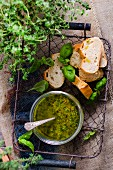Basil pesto with baguette