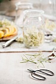 Ingredients for homemade elderflower lemonade