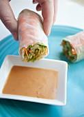 Frauenhand dippt Reispapierröllchen in ein Schälchen mit Erdnusssauce