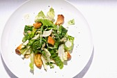 Green salad with croutons and Parmesan cheese