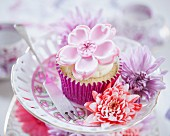 A cupcake decorated with a white fondant flower