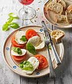 Insalata caprese (tomatoes, mozzarella and basil, Italy)
