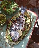 Fried gilthead on a garden table