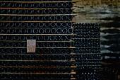 Hier lagert der Baga-Wein, Portugal