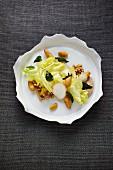 Endiviensalat mit Knollensauerklee, Kräuterseitlingen und Persischer Limette, Restaurant 'Steirereck', Wien
