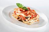 Piece of Vegetabe Lasagna