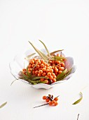 Sea buckthorn berries in a white bowl
