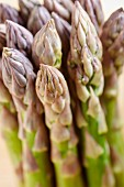 Tips of green asparagus (close-up)