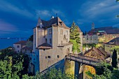 The old castle act Meersburg on Lake Constance