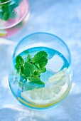 Lemon water with peppermint