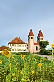 The church of St. Peter and Paul in Niederzell between flower and vegetable garden, Reichenau