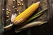 A corn cob on a rustic wooden surface
