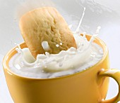 A shortbread biscuit falling into a cup of milk