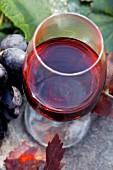 Rotweinglas und blaue Trauben