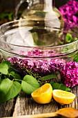 Fliederblütensirup herstellen: Blüten in Glasschale & Zuckerlösung im Hintergrund