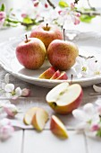 Fresh apples with apple blossom