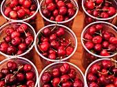Cups of cherries