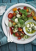 Tomato salad with cucumber strips and mozzarella