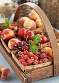 Fresh fruit in a wooden basket