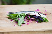 Stuffed gilthead with verbena, rose petals and lavender