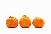Three Golden Nugget tangerines on a white surface