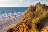 Die Steilküste genannt das 'Rote Kliff', Sylt