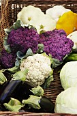 Cauliflowers, patty pan squash, aubergines and white cabbages in a basket