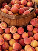 Fresh white peaches on a market stall