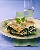 Herb lasagne