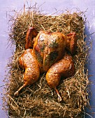 Bay leaf chicken on a bed of hay